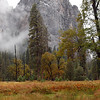 Fall Colors in Yosemite Valley - 24 Oct 2010
